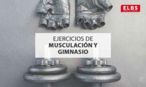 Ejercicios de musculación y gimnasio para principiantes