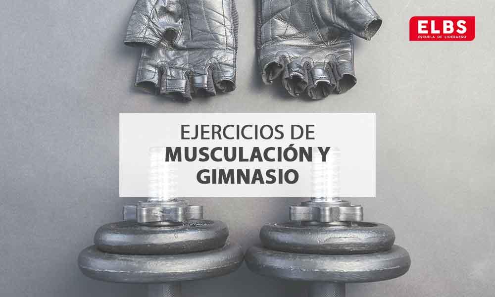 Ejercicios de musculación y gimnasio: ¿Cómo empezar?